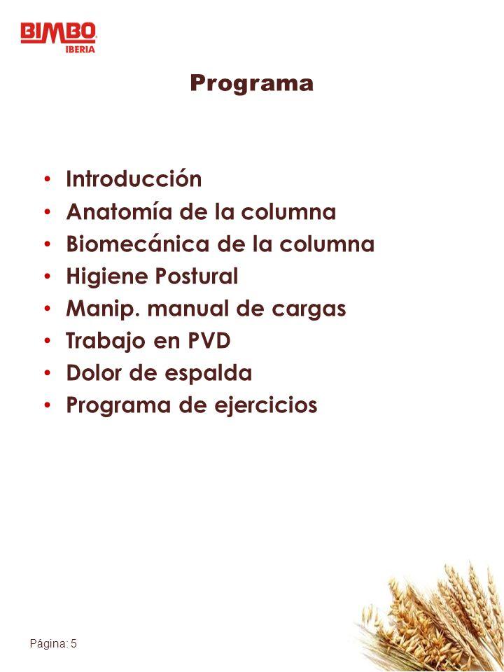 Página: 5 Programa Introducción Anatomía de la columna Biomecánica de la columna Higiene Postural Manip. manual de cargas Trabajo en PVD Dolor de espa