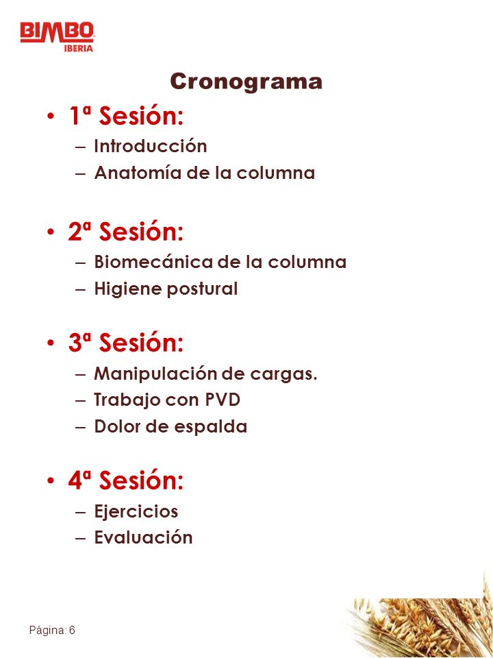 Página: 6 Cronograma 1ª Sesión: – Introducción – Anatomía de la columna 2ª Sesión: – Biomecánica de la columna – Higiene postural 3ª Sesión: – Manipul
