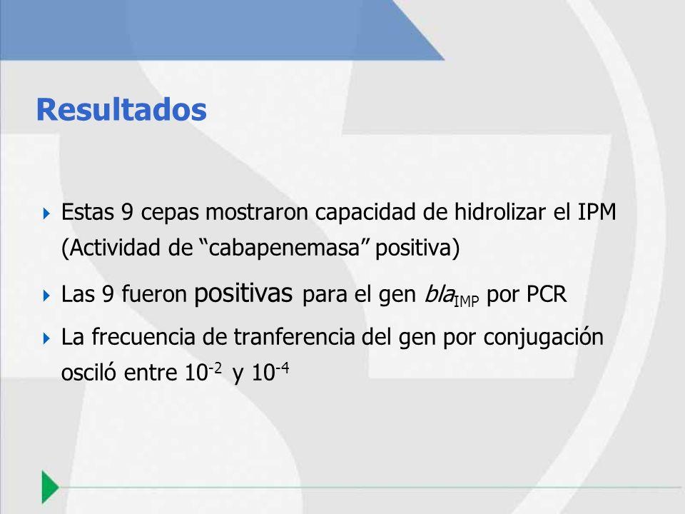 Resultados Estas 9 cepas mostraron capacidad de hidrolizar el IPM (Actividad de cabapenemasa positiva) Las 9 fueron positivas para el gen bla IMP por