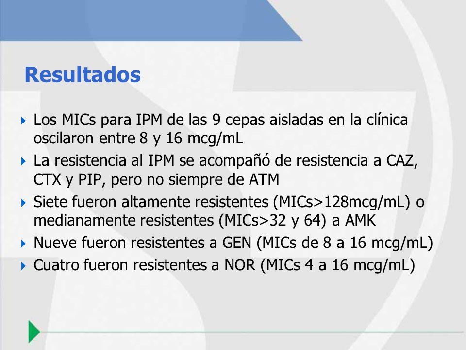 Resultados Los MICs para IPM de las 9 cepas aisladas en la clínica oscilaron entre 8 y 16 mcg/mL La resistencia al IPM se acompañó de resistencia a CA