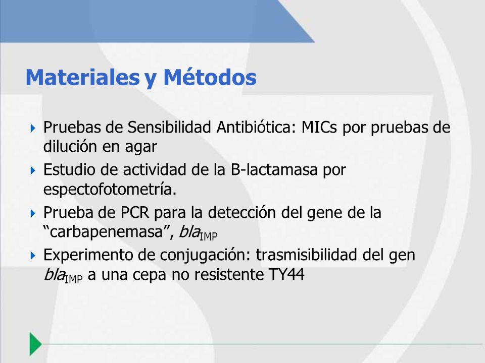 Materiales y Métodos Pruebas de Sensibilidad Antibiótica: MICs por pruebas de dilución en agar Estudio de actividad de la B-lactamasa por espectofotom