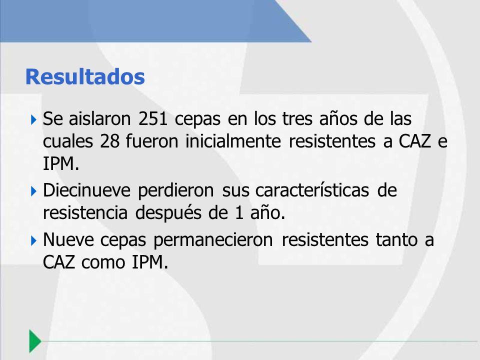 Resultados Se aislaron 251 cepas en los tres años de las cuales 28 fueron inicialmente resistentes a CAZ e IPM. Diecinueve perdieron sus característic