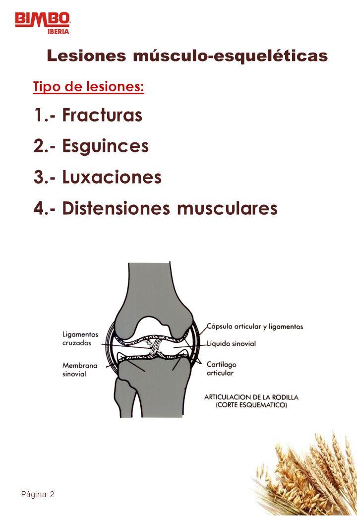 Página: 2 Lesiones músculo-esqueléticas Tipo de lesiones: 1.- Fracturas 2.- Esguinces 3.- Luxaciones 4.- Distensiones musculares