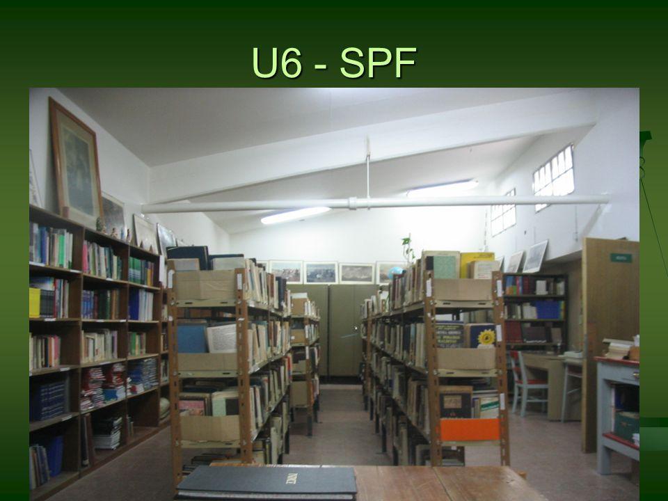 U6 - SPF