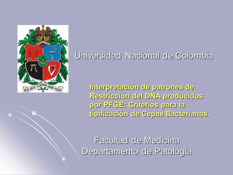 Universidad Nacional de Colombia Facultad de Medicina Departamento de Patología Interpretación de patrones de Restricción del DNA producidos por PFGE: