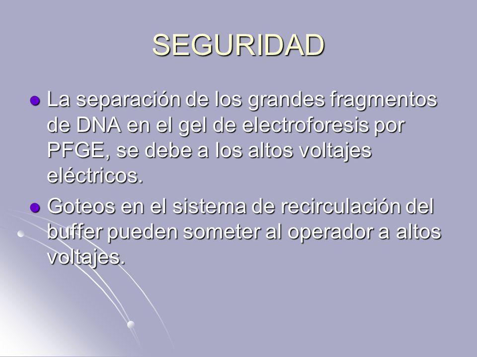 SEGURIDAD La separación de los grandes fragmentos de DNA en el gel de electroforesis por PFGE, se debe a los altos voltajes eléctricos. La separación
