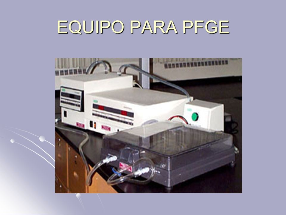 EQUIPO PARA PFGE