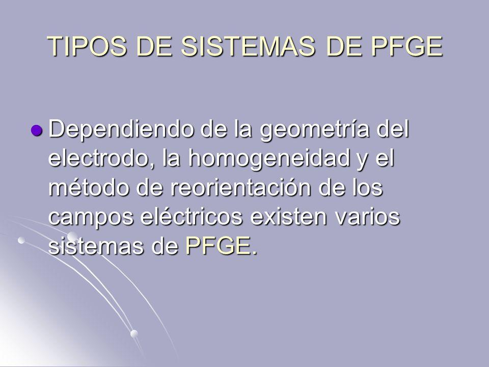 TIPOS DE SISTEMAS DE PFGE Dependiendo de la geometría del electrodo, la homogeneidad y el método de reorientación de los campos eléctricos existen var