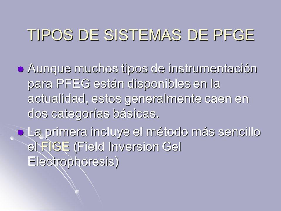 TIPOS DE SISTEMAS DE PFGE Aunque muchos tipos de instrumentación para PFEG están disponibles en la actualidad, estos generalmente caen en dos categorí