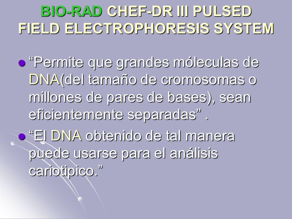 BIO-RAD CHEF-DR III PULSED FIELD ELECTROPHORESIS SYSTEM Permite que grandes móleculas de DNA(del tamaño de cromosomas o millones de pares de bases), s
