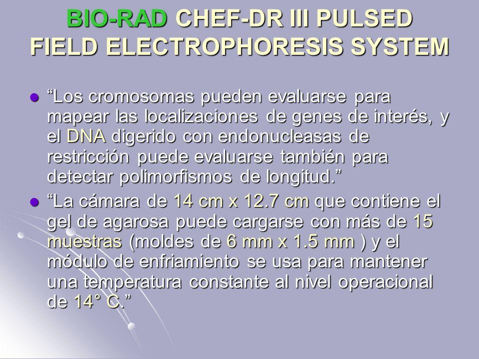 BIO-RAD CHEF-DR III PULSED FIELD ELECTROPHORESIS SYSTEM Los cromosomas pueden evaluarse para mapear las localizaciones de genes de interés, y el DNA d