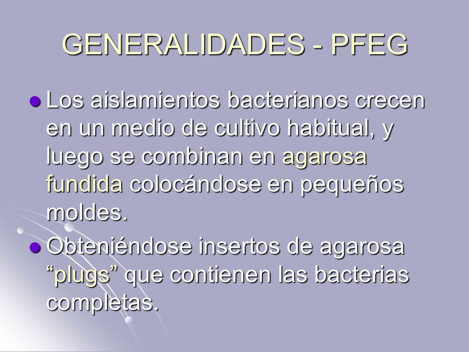 GENERALIDADES - PFEG Los aislamientos bacterianos crecen en un medio de cultivo habitual, y luego se combinan en agarosa fundida colocándose en pequeñ