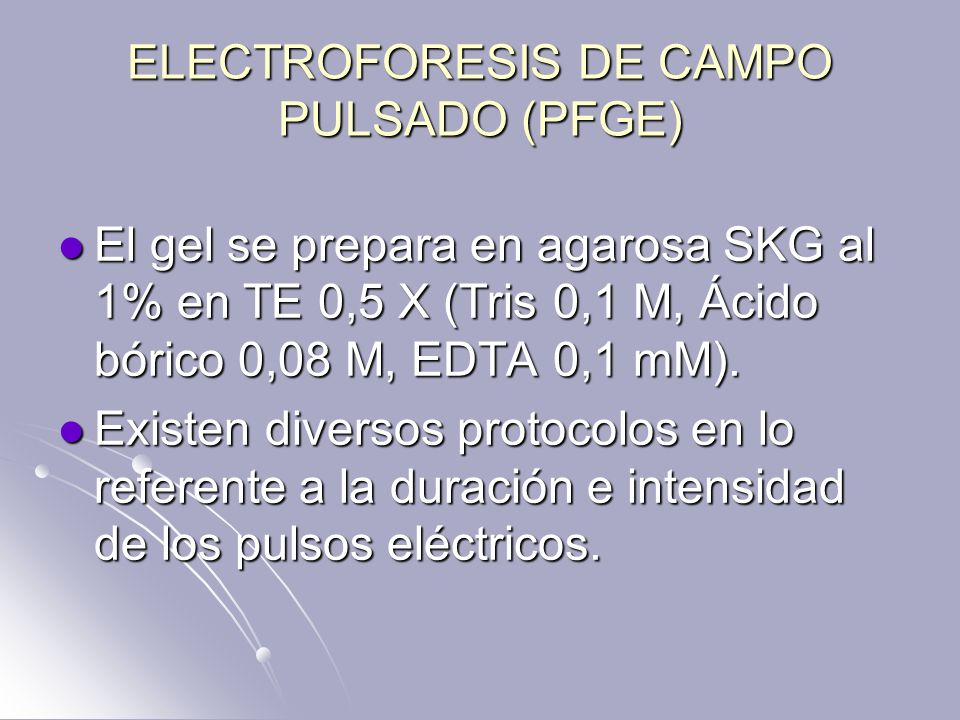 ELECTROFORESIS DE CAMPO PULSADO (PFGE) El gel se prepara en agarosa SKG al 1% en TE 0,5 X (Tris 0,1 M, Ácido bórico 0,08 M, EDTA 0,1 mM). El gel se pr