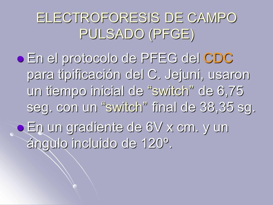 ELECTROFORESIS DE CAMPO PULSADO (PFGE) En el protocolo de PFEG del CDC para tipificación del C. Jejuni, usaron un tiempo inicial de switch de 6,75 seg