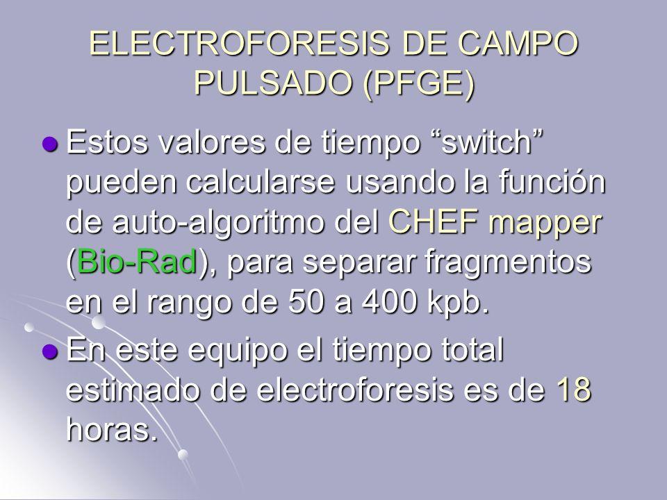 ELECTROFORESIS DE CAMPO PULSADO (PFGE) Estos valores de tiempo switch pueden calcularse usando la función de auto-algoritmo del CHEF mapper (Bio-Rad),