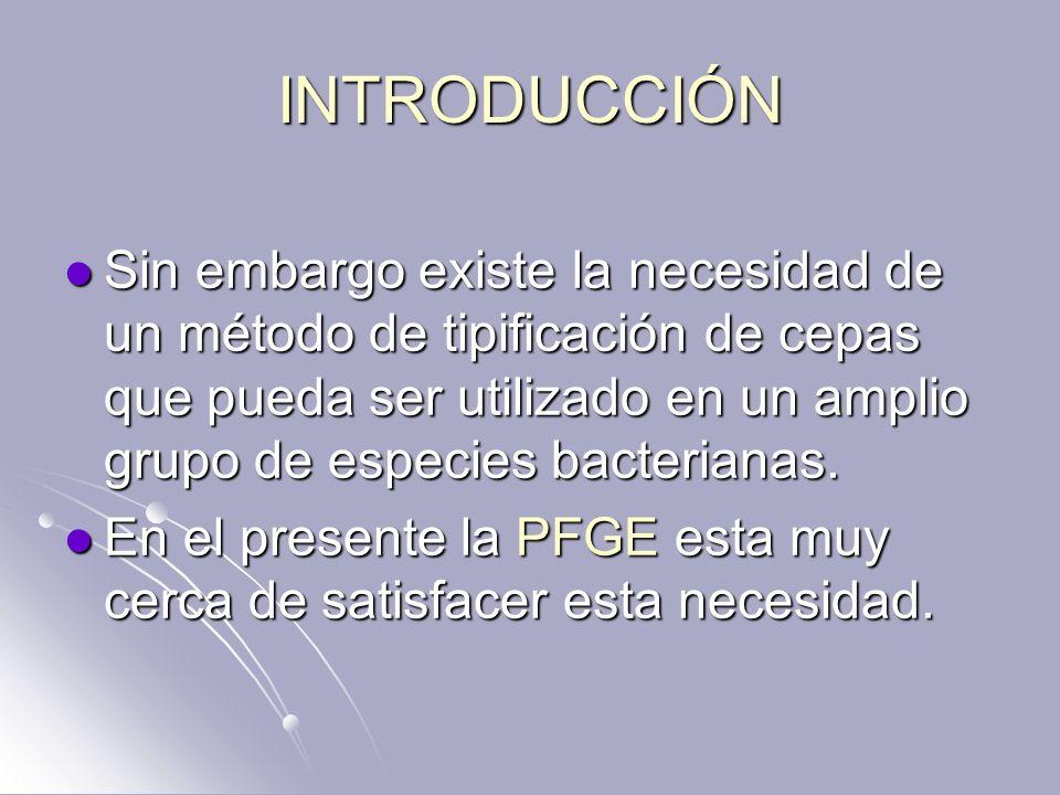 INTRODUCCIÓN Sin embargo existe la necesidad de un método de tipificación de cepas que pueda ser utilizado en un amplio grupo de especies bacterianas.