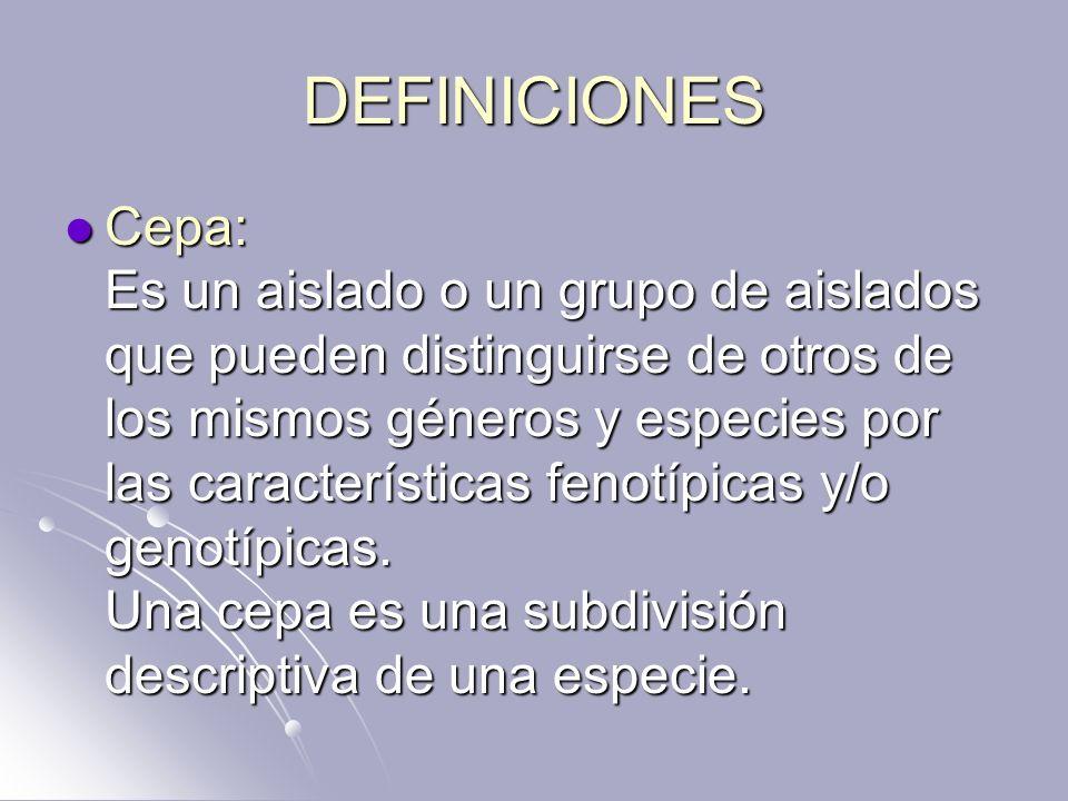 DEFINICIONES Cepa: Es un aislado o un grupo de aislados que pueden distinguirse de otros de los mismos géneros y especies por las características feno