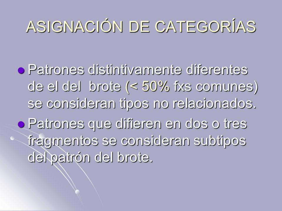 ASIGNACIÓN DE CATEGORÍAS Patrones distintivamente diferentes de el del brote (< 50% fxs comunes) se consideran tipos no relacionados. Patrones distint