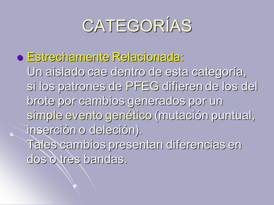 CATEGORÍAS Estrechamente Relacionada: Un aislado cae dentro de esta categoría, si los patrones de PFEG difieren de los del brote por cambios generados
