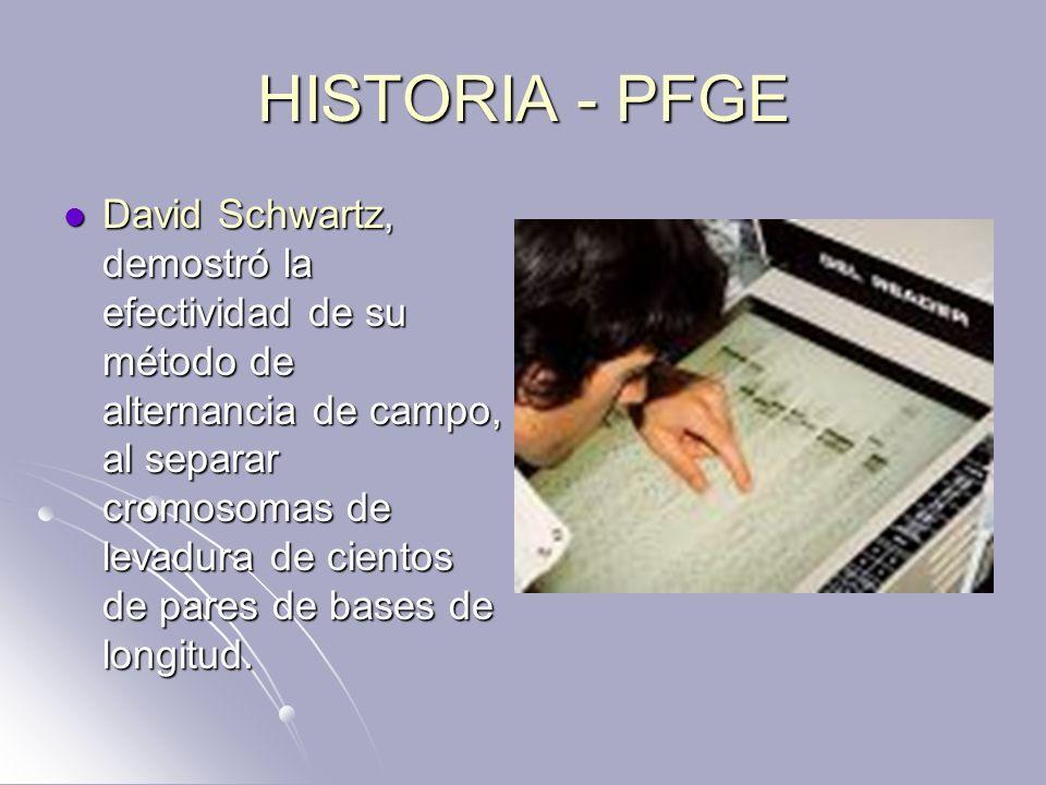 HISTORIA - PFGE David Schwartz, demostró la efectividad de su método de alternancia de campo, al separar cromosomas de levadura de cientos de pares de