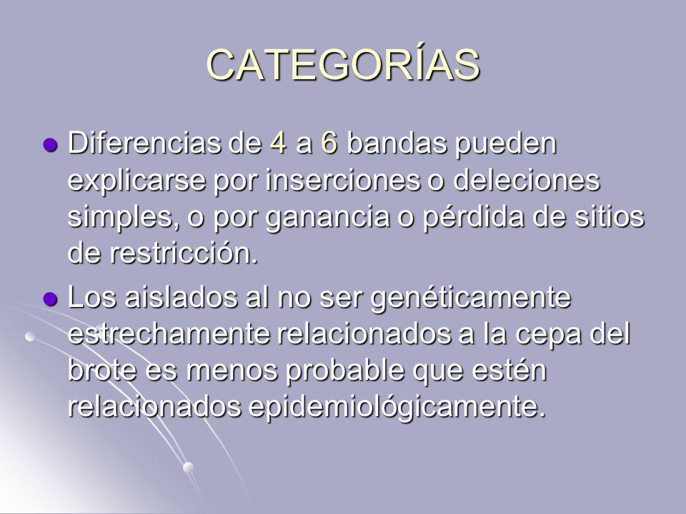 CATEGORÍAS Diferencias de 4 a 6 bandas pueden explicarse por inserciones o deleciones simples, o por ganancia o pérdida de sitios de restricción. Dife
