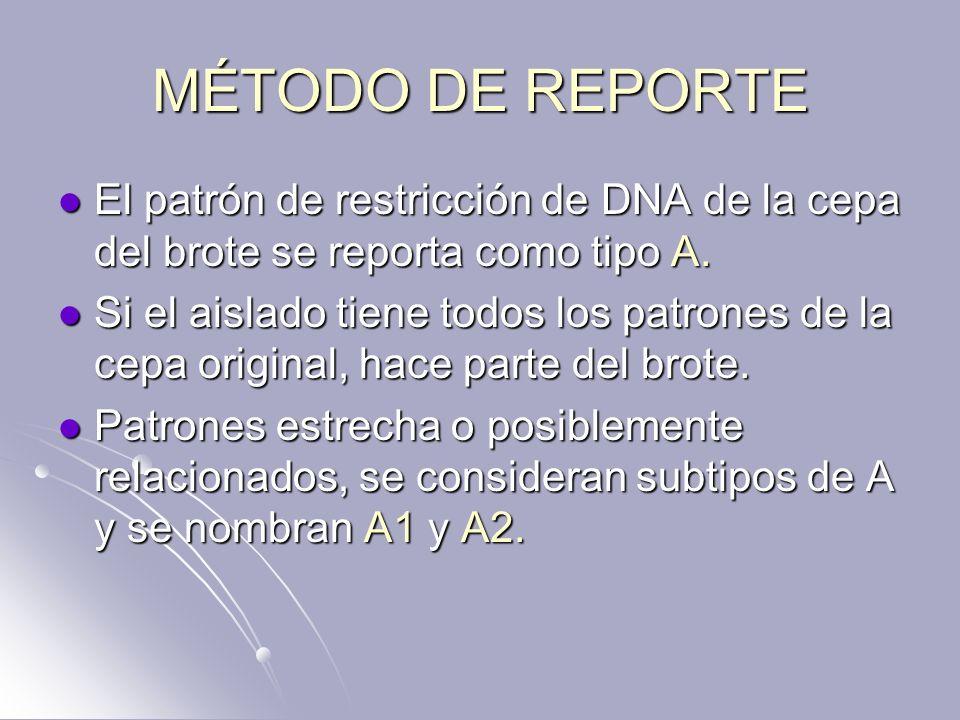 MÉTODO DE REPORTE El patrón de restricción de DNA de la cepa del brote se reporta como tipo A. El patrón de restricción de DNA de la cepa del brote se