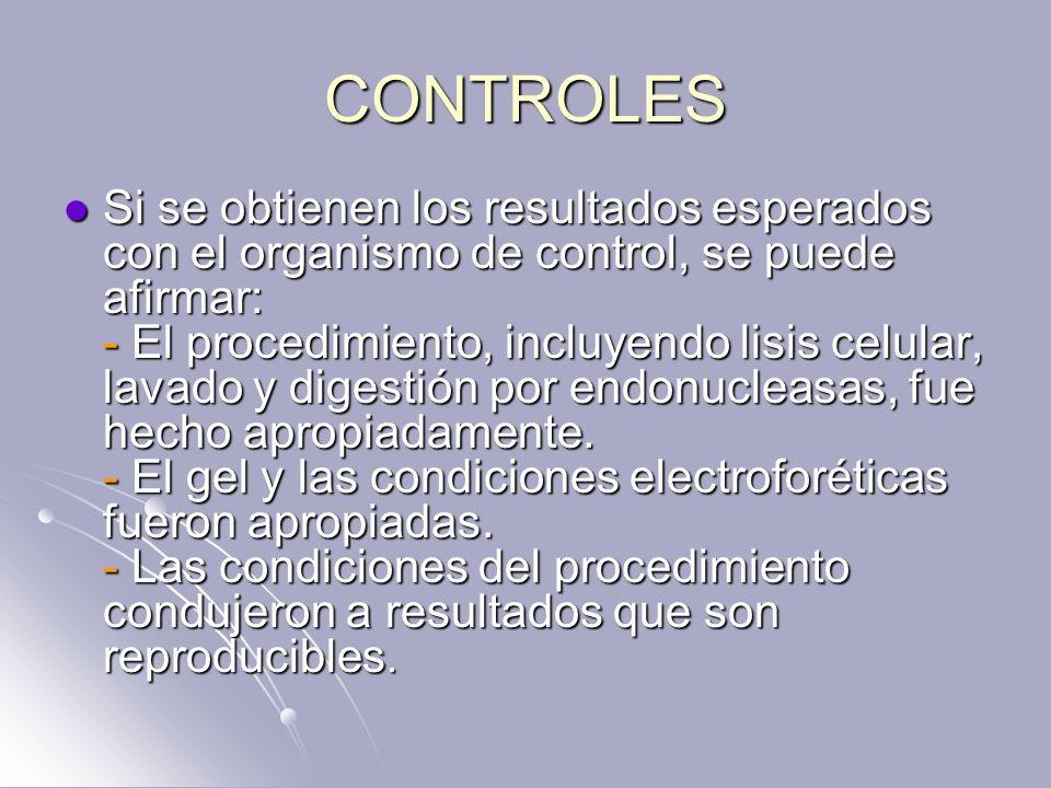 CONTROLES Si se obtienen los resultados esperados con el organismo de control, se puede afirmar: - El procedimiento, incluyendo lisis celular, lavado