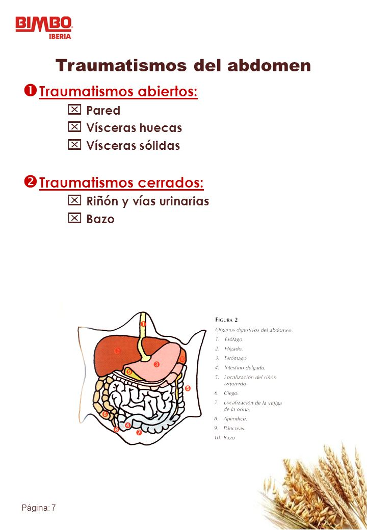 Página: 7 Traumatismos del abdomen Traumatismos abiertos: Pared Vísceras huecas Vísceras sólidas Traumatismos cerrados: Riñón y vías urinarias Bazo