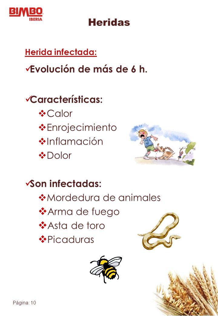 Página: 10 Heridas Herida infectada: Evolución de más de 6 h. Características: Calor Enrojecimiento Inflamación Dolor Son infectadas: Mordedura de ani