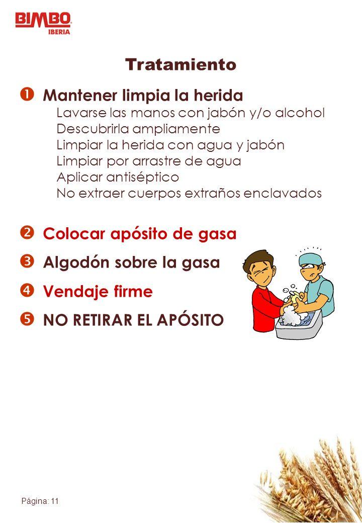 Página: 11 Tratamiento Mantener limpia la herida Lavarse las manos con jabón y/o alcohol Descubrirla ampliamente Limpiar la herida con agua y jabón Li