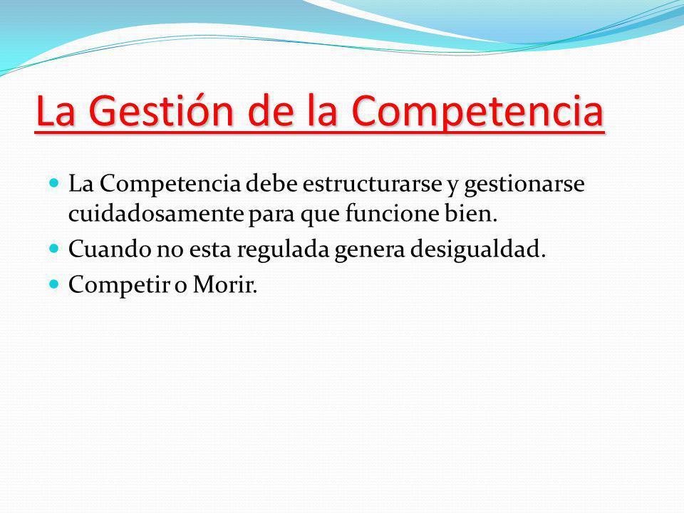 La Gestión de la Competencia La Competencia debe estructurarse y gestionarse cuidadosamente para que funcione bien.