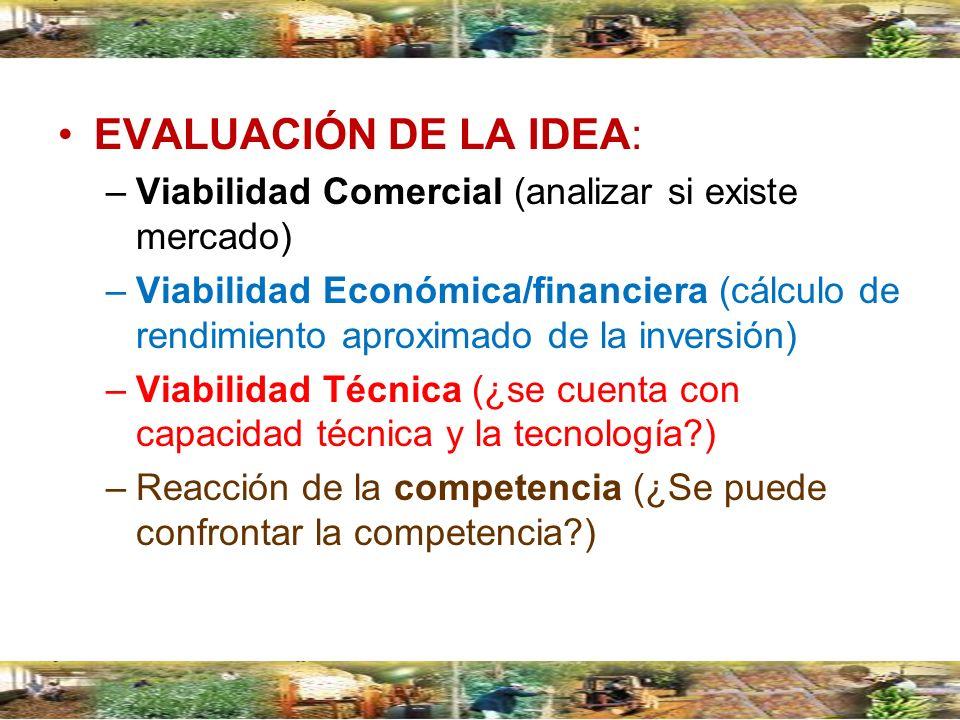 EVALUACIÓN DE LA IDEA: –Viabilidad Comercial (analizar si existe mercado) –Viabilidad Económica/financiera (cálculo de rendimiento aproximado de la in