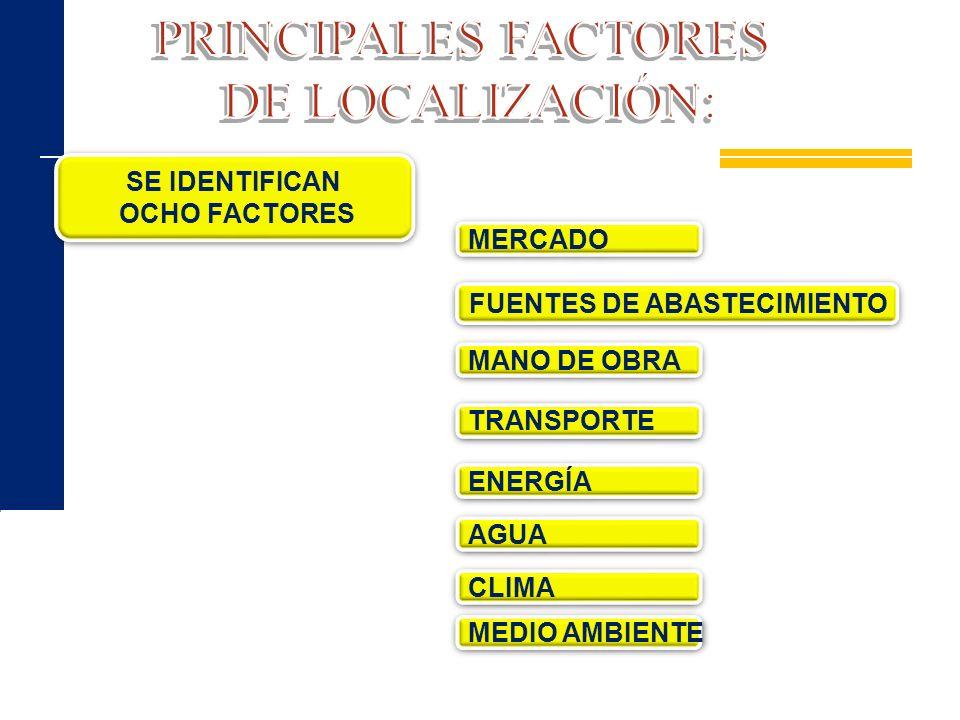 MERCADO SE IDENTIFICAN OCHO FACTORES SE IDENTIFICAN OCHO FACTORES MANO DE OBRA FUENTES DE ABASTECIMIENTO TRANSPORTE ENERGÍA AGUA CLIMA MEDIO AMBIENTE