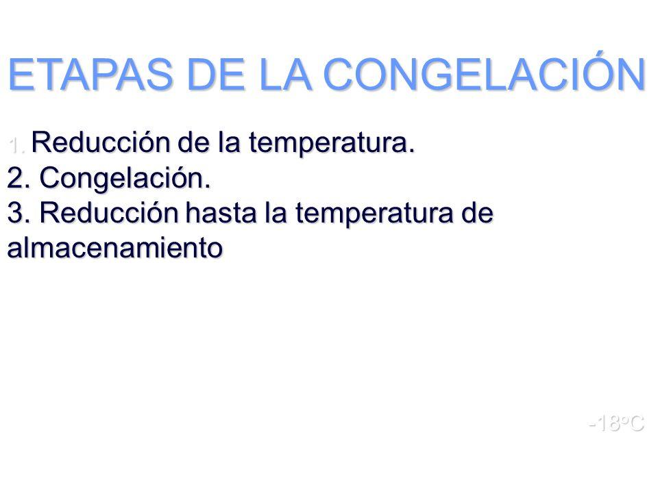 ETAPAS DE LA CONGELACIÓN 1. Reducción de la temperatura. 2. Congelación. 3. Reducción hasta la temperatura de almacenamiento -18 o C
