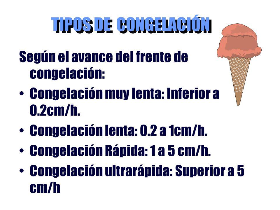 TIPOS DE CONGELACIÓN Según el avance del frente de congelación: Congelación muy lenta: Inferior a 0.2cm/h. Congelación lenta: 0.2 a 1cm/h. Congelación