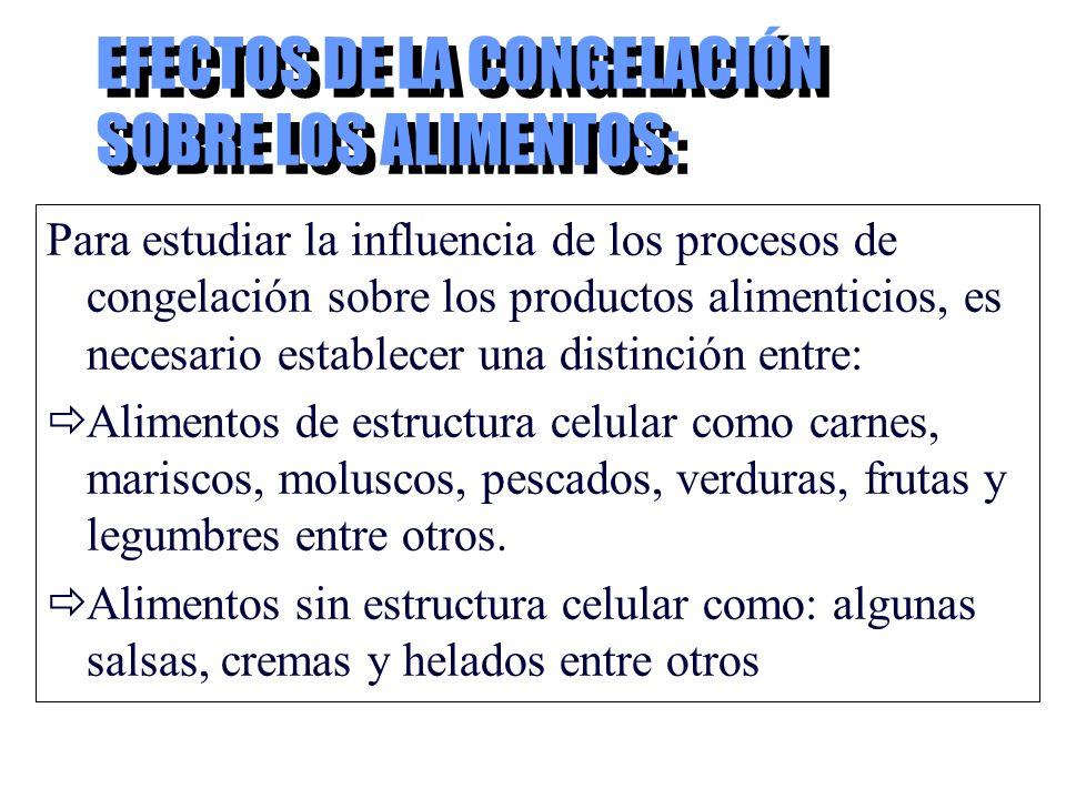 EFECTOS DE LA CONGELACIÓN SOBRE LOS ALIMENTOS: Para estudiar la influencia de los procesos de congelación sobre los productos alimenticios, es necesar