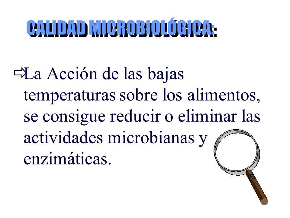 CALIDAD MICROBIOLÓGICA: La Acción de las bajas temperaturas sobre los alimentos, se consigue reducir o eliminar las actividades microbianas y enzimáti