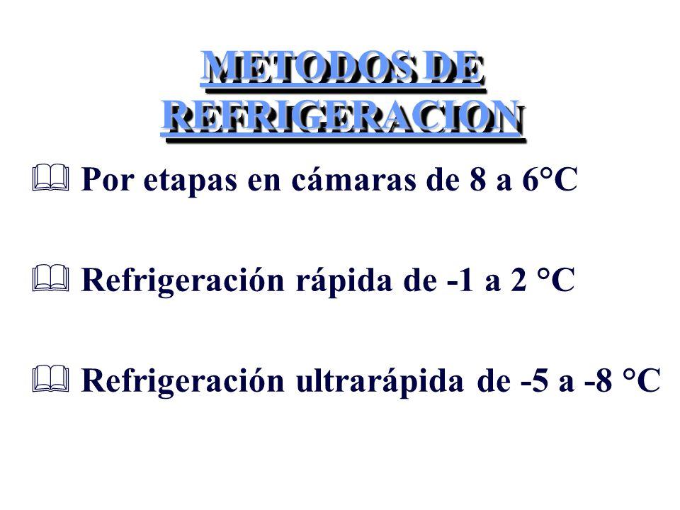 METODOS DE REFRIGERACION & Por etapas en cámaras de 8 a 6°C & Refrigeración rápida de -1 a 2 °C & Refrigeración ultrarápida de -5 a -8 °C