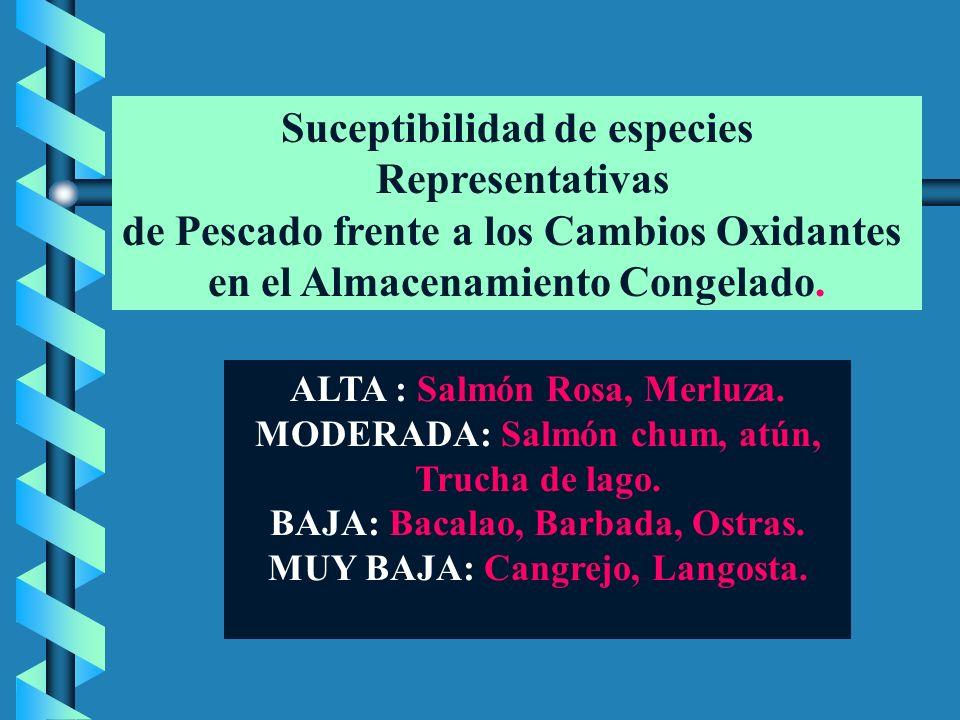 ALMACENAMIENTO DE PESCADOS ALMACENAMIENTO DE PESCADOS ASPECTOS DE CALIDAD Criterios Fisicoquímicos, microbiológicos y organolépticos.