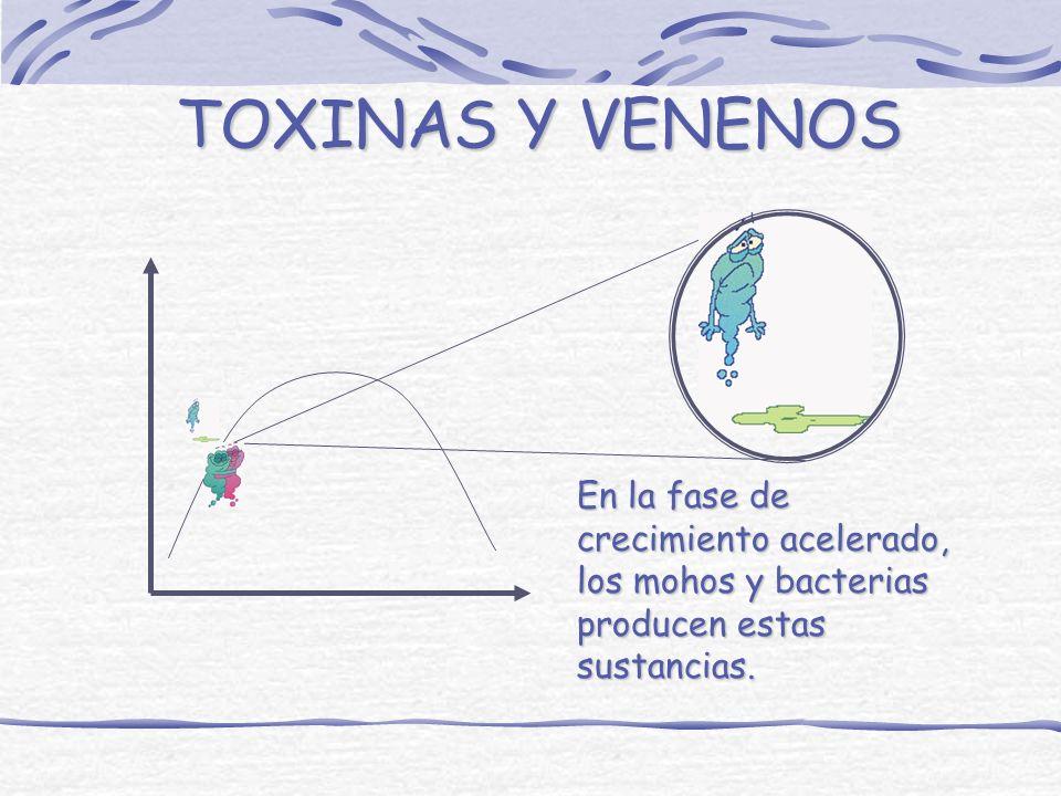 LOS HONGOS LOS HONGOS PUEDEN CRECER EN TODOS LOS ALIMENTOS, CASI A CUALQUIER TEMPERATURA DE ALMACENAMIENTO Y EN AMBIENTES HUMEDOS, SECOS, ACIDOS, SALA