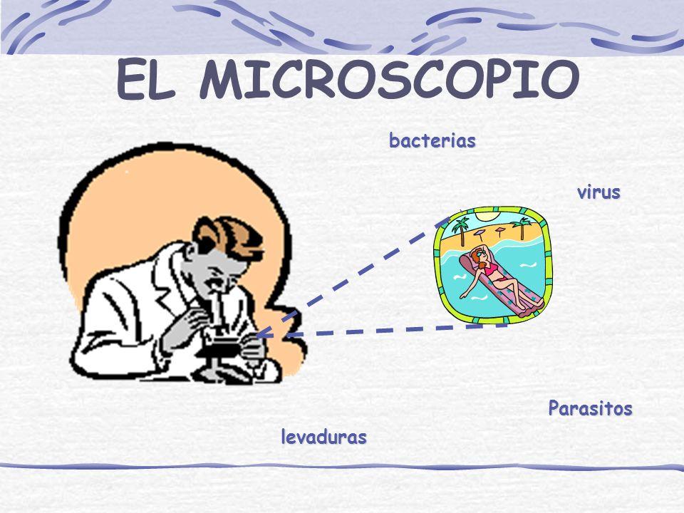 EL MUNDO MICROSCOPICO