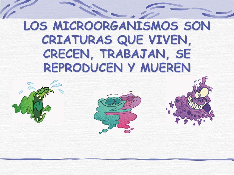 ¿ DONDE SE ENCUENTRAN LOS MICROORGANISMOS? AIRE SUELO AGUA ANIMALES
