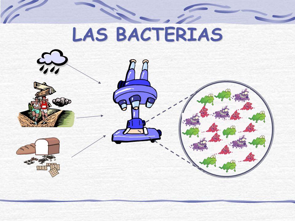 LOS MICROORGANISMOS SON CRIATURAS QUE VIVEN, CRECEN, TRABAJAN, SE REPRODUCEN Y MUEREN