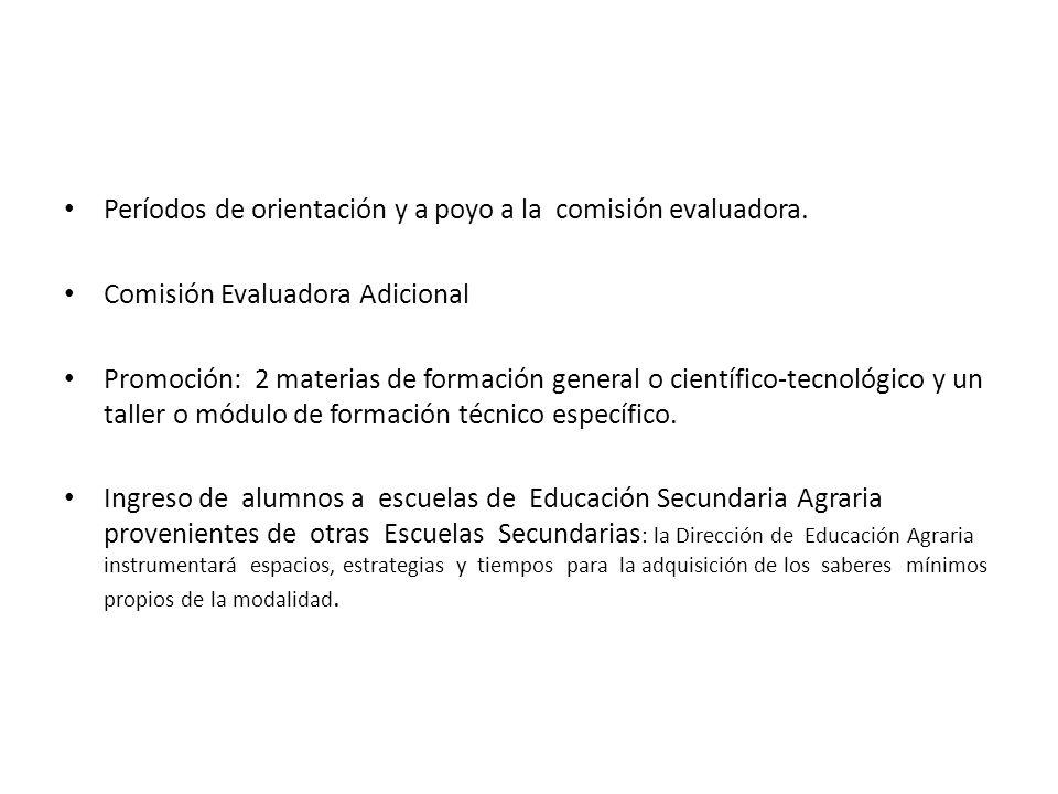 Períodos de orientación y a poyo a la comisión evaluadora. Comisión Evaluadora Adicional Promoción: 2 materias de formación general o científico-tecno