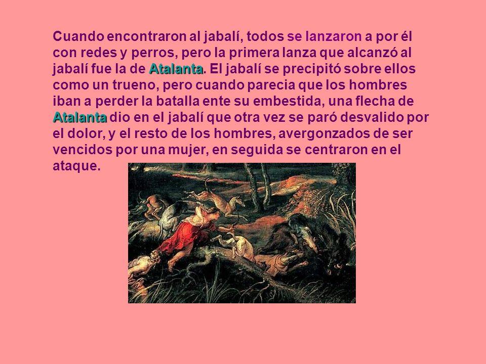 Atalanta Atalanta Cuando encontraron al jabalí, todos se lanzaron a por él con redes y perros, pero la primera lanza que alcanzó al jabalí fue la de A