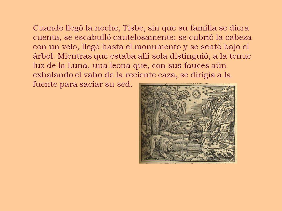 Cuando llegó la noche, Tisbe, sin que su familia se diera cuenta, se escabulló cautelosamente; se cubrió la cabeza con un velo, llegó hasta el monumen