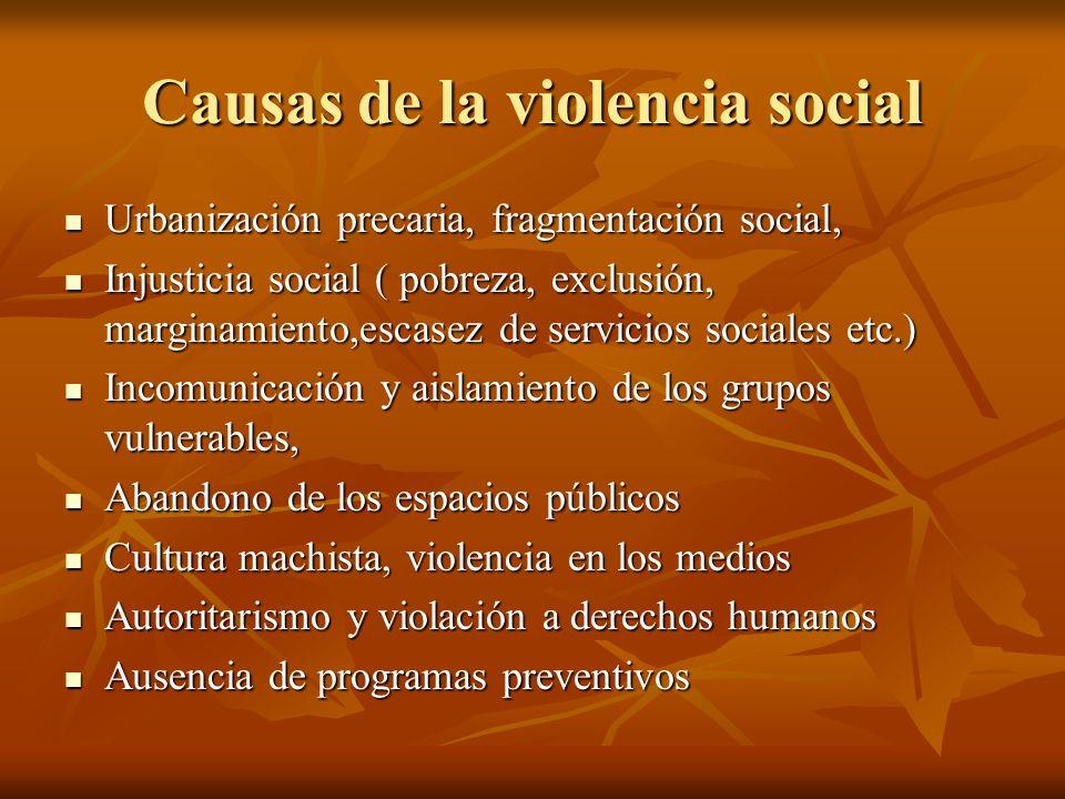 Causas de la violencia social Urbanización precaria, fragmentación social, Urbanización precaria, fragmentación social, Injusticia social ( pobreza, e