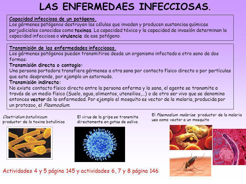 LAS ENFERMEDAES INFECCIOSAS. Actividades 4 y 5 página 145 y actividades 6, 7 y 8 página 146 Capacidad infecciosa de un patógeno. Los gérmenes patógeno
