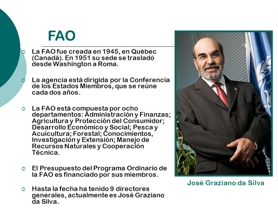 La FAO fue creada en 1945, en Québec (Canadá). En 1951 su sede se trasladó desde Washington a Roma. La agencia está dirigida por la Conferencia de los