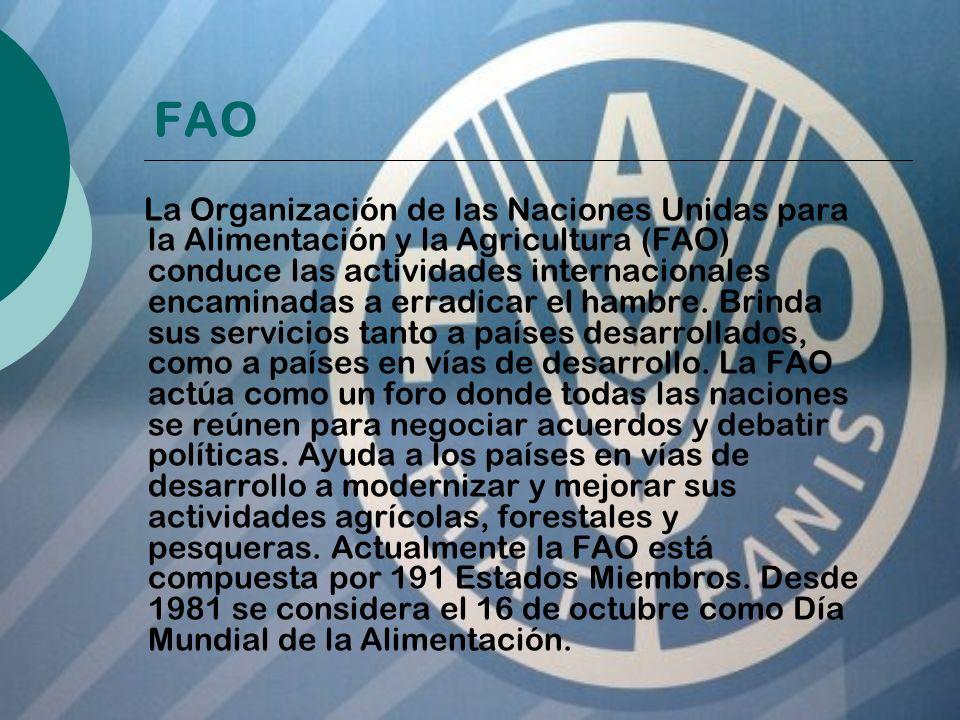 La FAO fue creada en 1945, en Québec (Canadá).En 1951 su sede se trasladó desde Washington a Roma.
